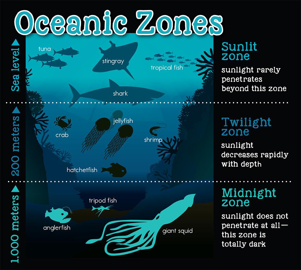 ETW_Beneath the Ocean Waves page 5.jpg