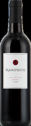 2015 Manifesto ZN.png