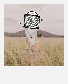 The Beekeeper Polaroid - In Nature