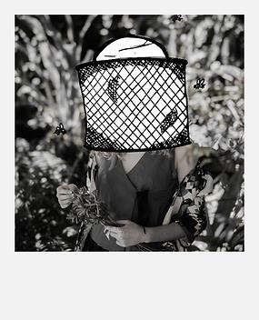 The Beekeeper Polaroid - Flowers
