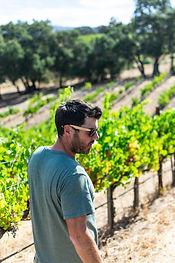 Winemaker, David Baird