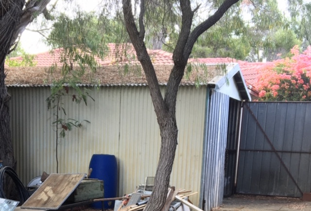 Asbestos shed Before
