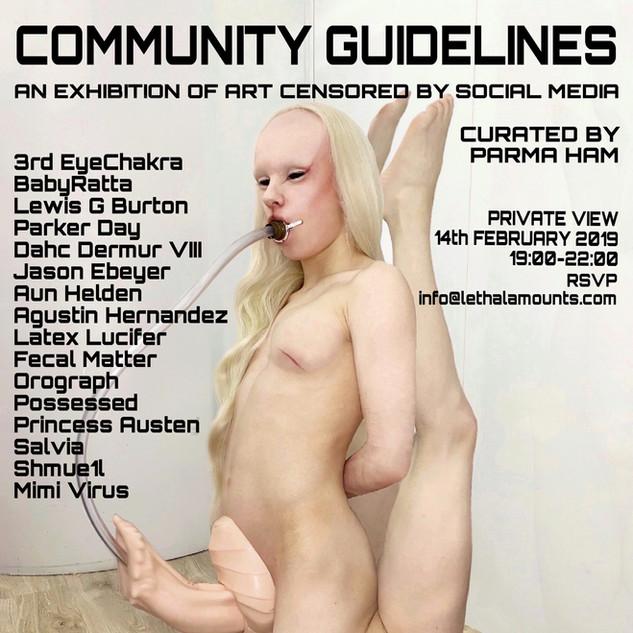 Community Guidelines - Salvia.JPEG