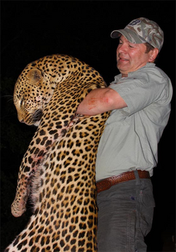Steve Perrins leopard