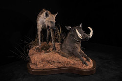 Hyena and Warthog
