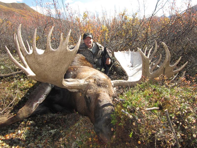 Joe Pedersen with his Moose in the North West Territory