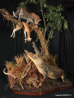 Leopard-Crocodile