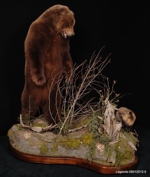 Bear Brown 1