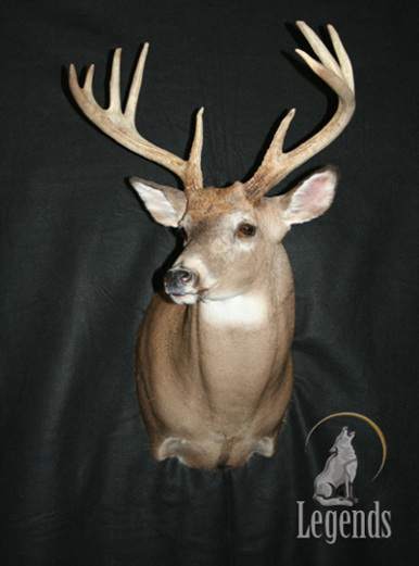 2 - Semi Sneak Whitetail