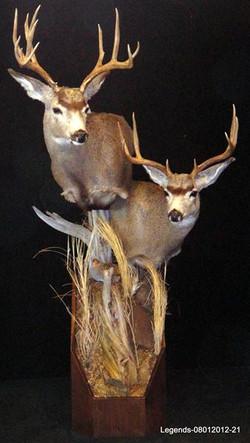 Deer Mule Pedestal
