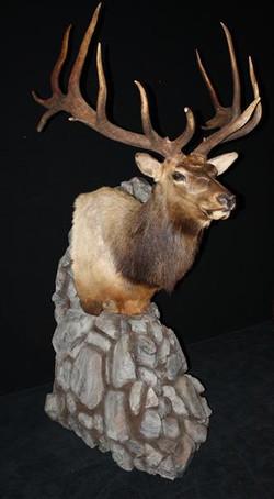 Elk Pedestal Mount 2