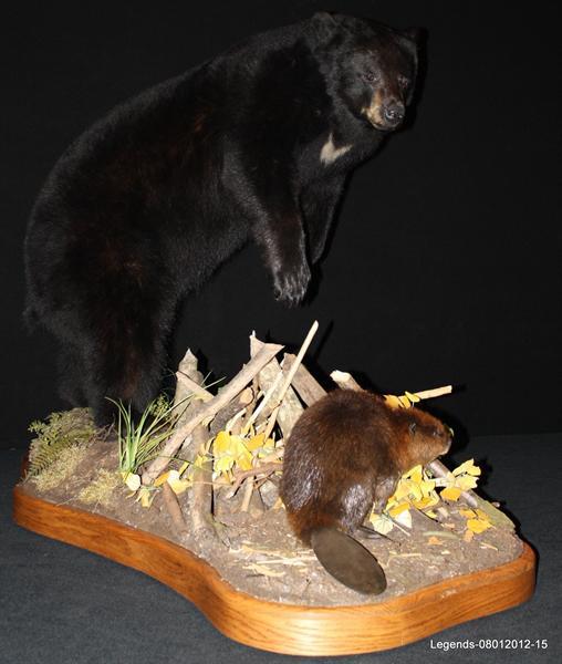 Bear Black LS 1
