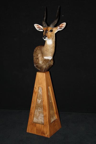 Bush Buck  Pedestal Mount
