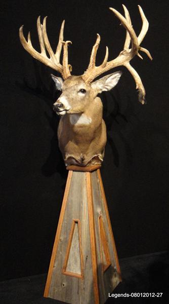 Deer Whitetail pedestal