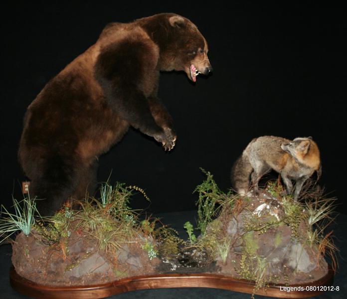 Bear Brown 3