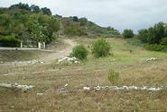 Coto de Caza Real Estate Sold by JoAnne DeBlis
