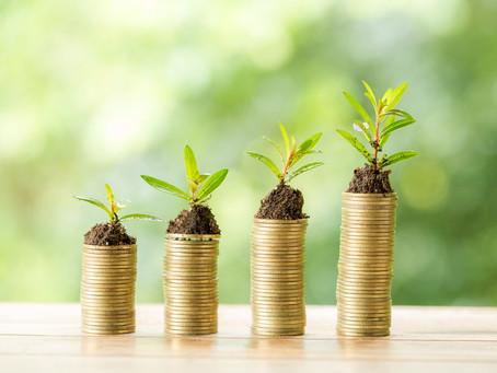 3 Steps To Grow Wealth On A MinimumWage