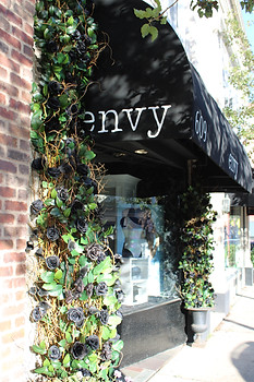 Flowers for Envy by Melissa Gorga