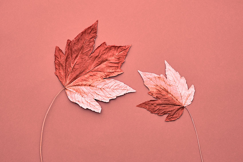 Fall Fashion, Vintage. Maple Leaf Couple