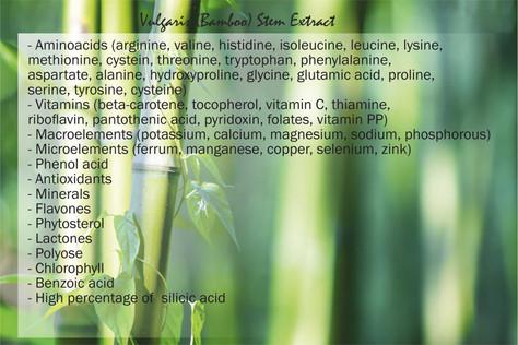 Bambu-uute