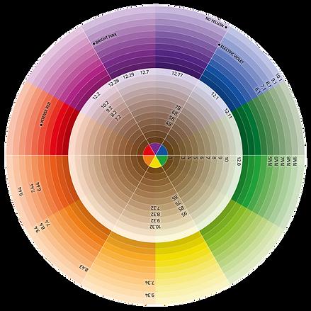 JMAKI-color circle v2.png