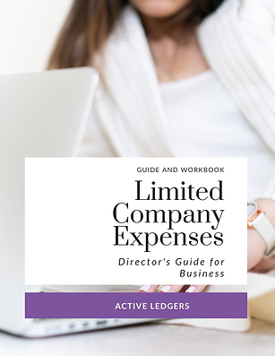 Directors Limited Company Expenses Workb