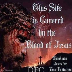 Jesus on Cross 18527556_1371706432876534_7658320066222599402_n