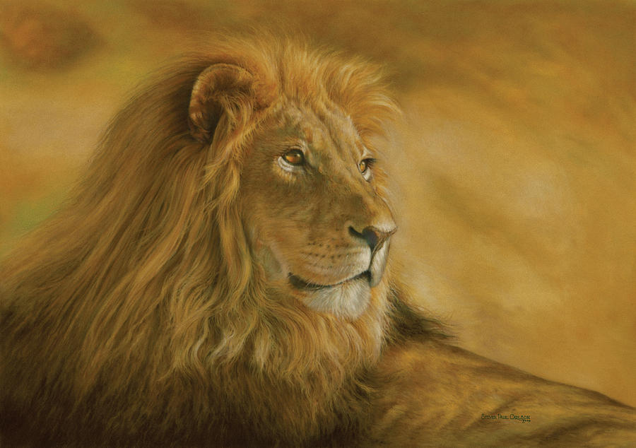 panthera-leo-lion-monarch-of-the-animal-kingdom-steven-paul-carlson