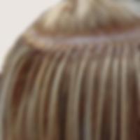 Polímero de Queratina Márcia Nascimento