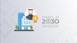 Vision 2030 Infographic