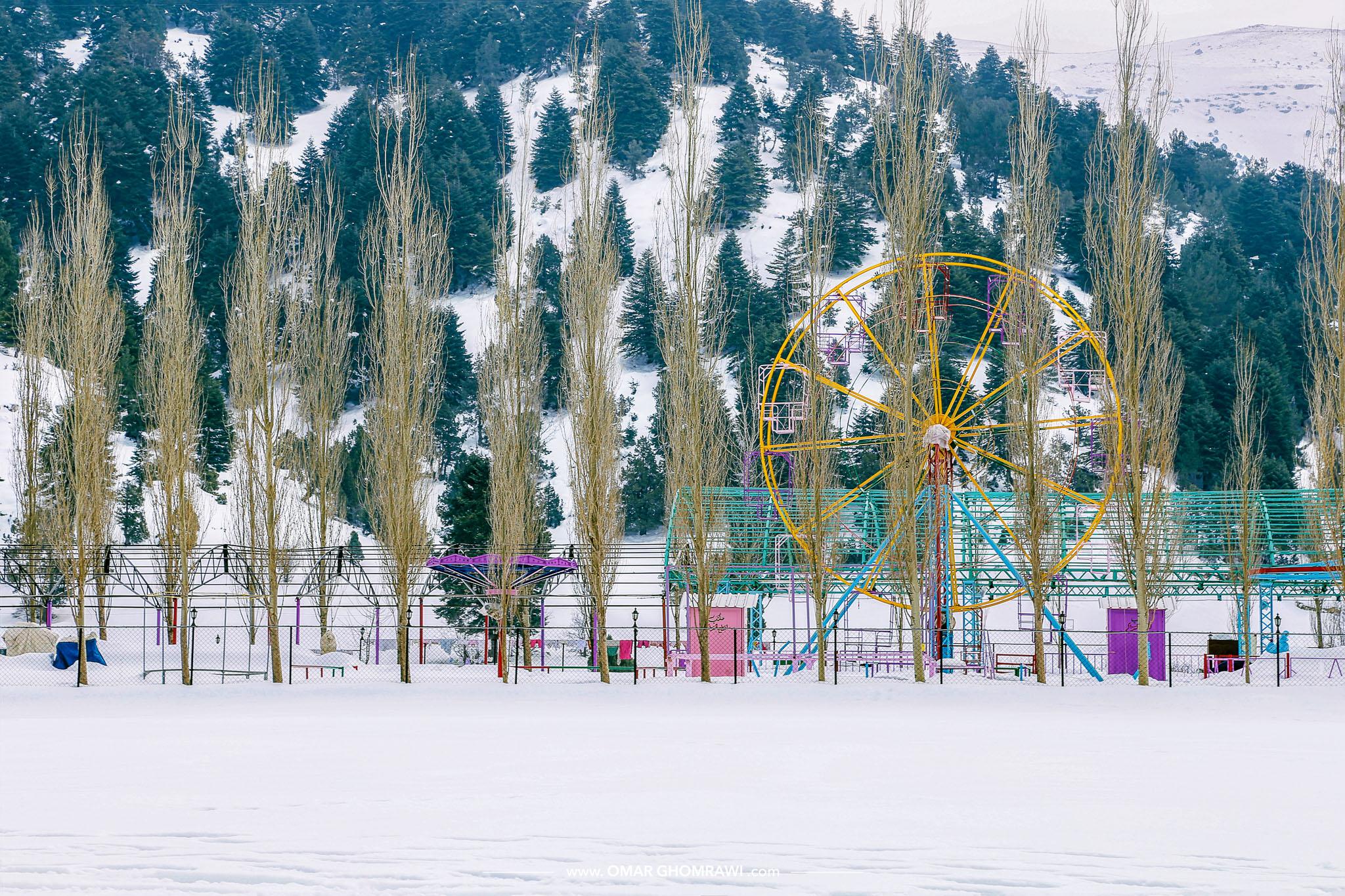 Qammua Park 1957