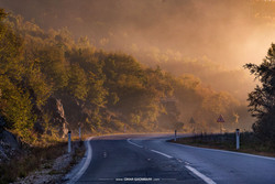 Way to Sutjeska Fog 3293