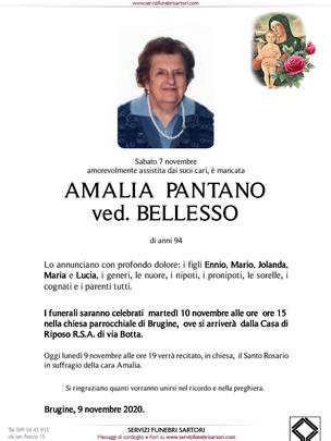Pantano Amalia Patella