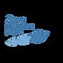 DESP logo clear.png