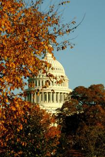 US Captiol in Fall