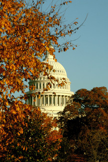US Captiol in Fall