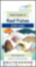 Reef Fishes of Sri Lanka Book Arjan Rajasuriya