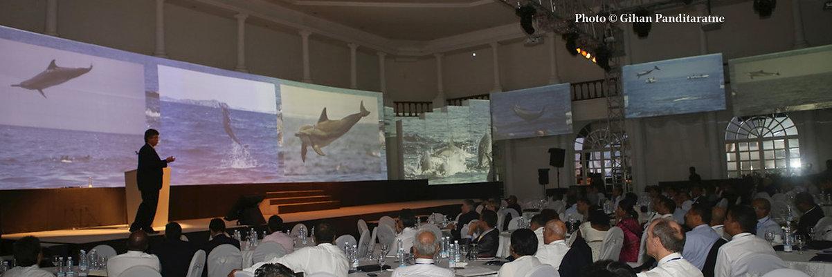 Marine Mammal presentation Howard Martenstyn