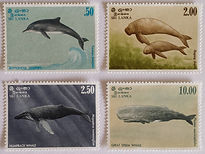 Sri Lanka Marine Mammal postage stamps