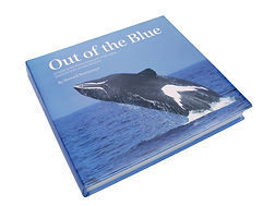 Out of the Blue hardcover book Howard Martenstyn