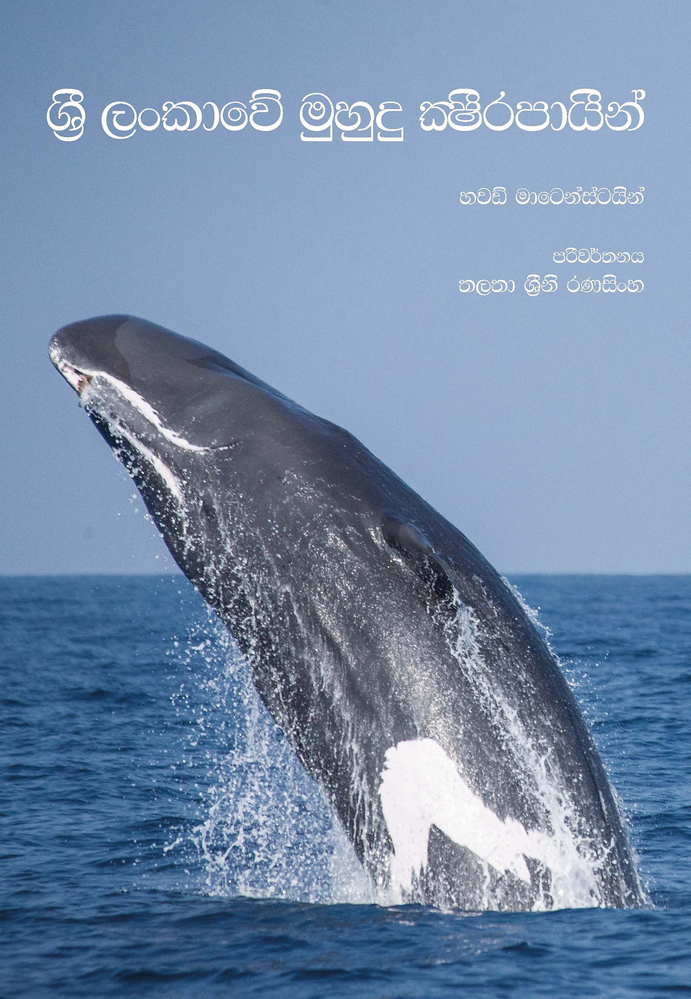 Sri Lanka Marine Mammal Research & Conservation, Technical Report