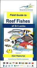 Reef Fishes of Sri Lanka Book Arjan Rajasuriya