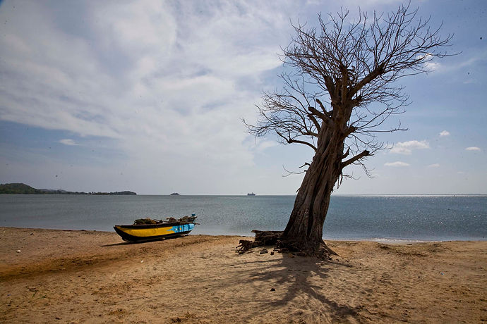 Koddiyar Bay, Tricomalee