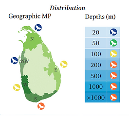 Humpback dolphin geographical and depth distribution