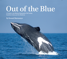 Out of the Blue Book Howard Martenstyn