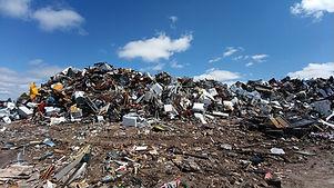 Gecko-recycling-centre-1.jpeg