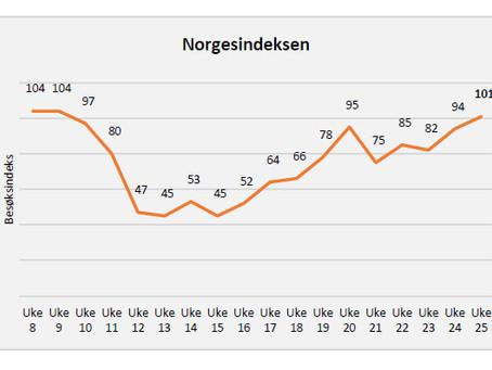 Besøksindeks for Norske kjøpesentre uke 25