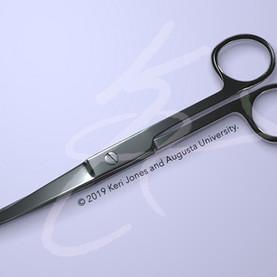 Surgical Scissors Closed