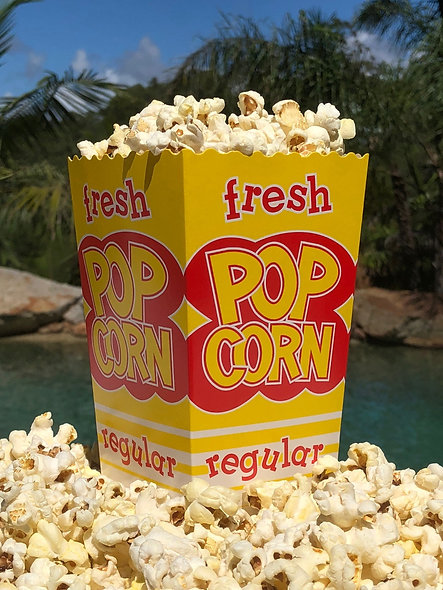 Regular 20gm Red and Yellow Popcorn Crash Cup each