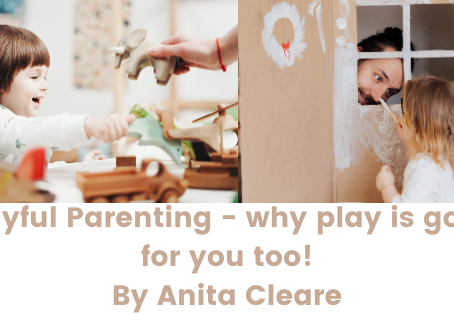 Playful Parenting by Anita Cleare